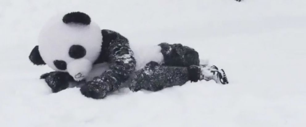 "PHOTO: A Millersville, Md. father dressed up in a panda costume and challenged the National Zoos giant panda Tian Tian to a ""snow battle"" during this weekends blizzard."