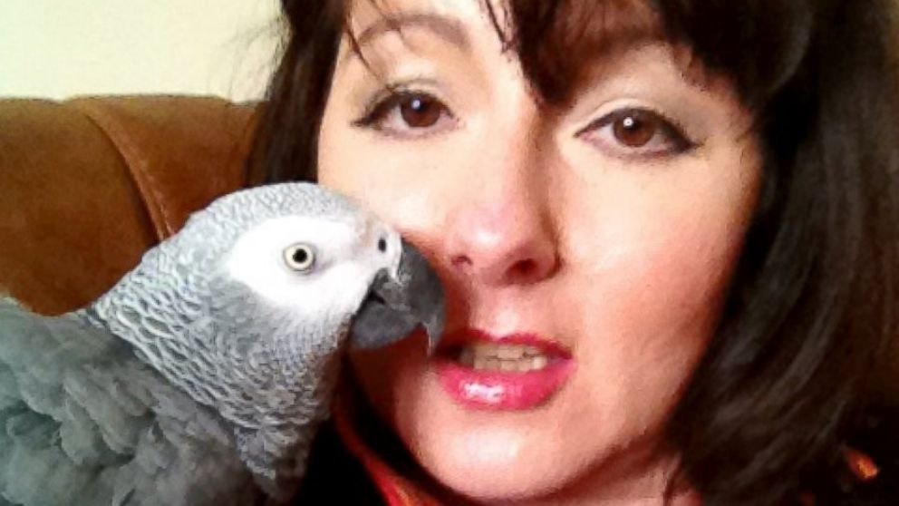 Cara Cosson hopes sharing her story will locate JoeJoe the parrot.
