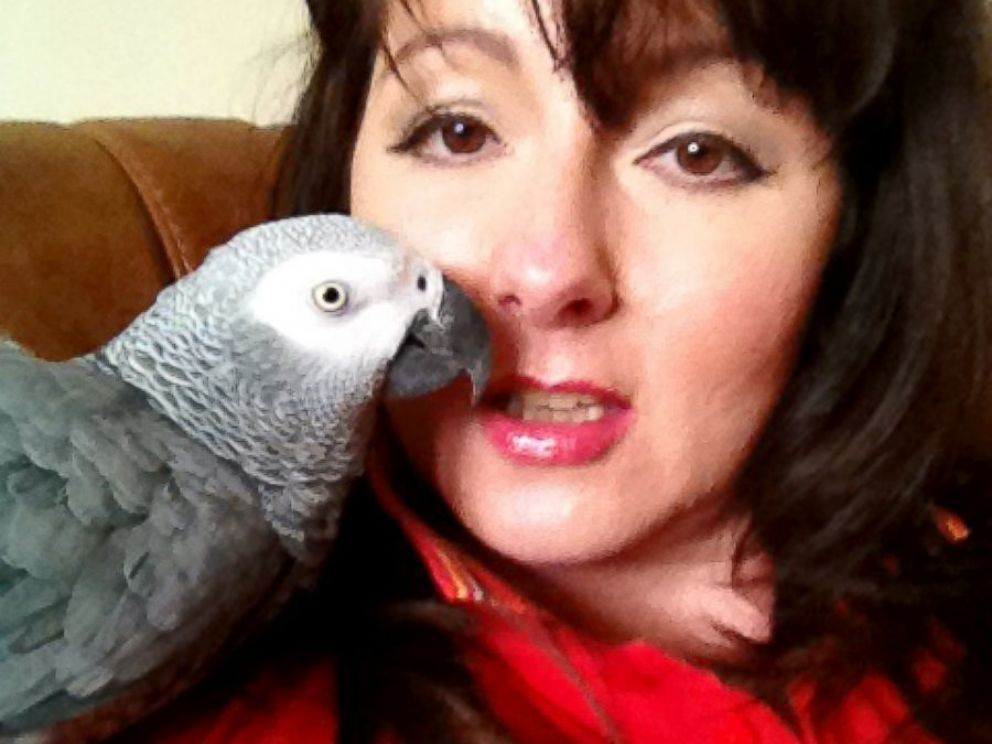 PHOTO: Cara Cosson hopes sharing her story will locate JoeJoe the parrot.