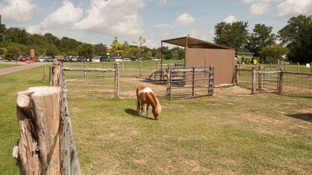 PHOTO: Hyatt Regency Lost Pines Resort and Spa, Texas