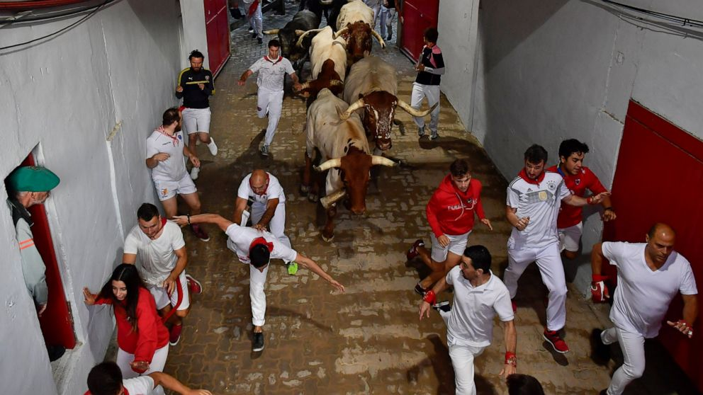 Pamplona sees 3 gorings in 8th and final bull run