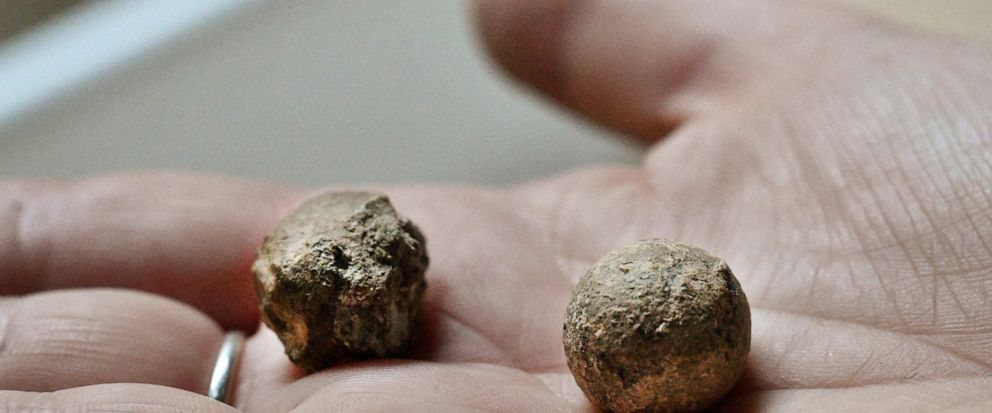 Musket balls possibly dating from the 1800s are among items found during an archaeological survey in the Long Barrack on the Alamo grounds on Tuesday, Aug. 13, 2019. The ball on the left has been shot. (Billy Calzada/The San Antonio Express-News via AP)