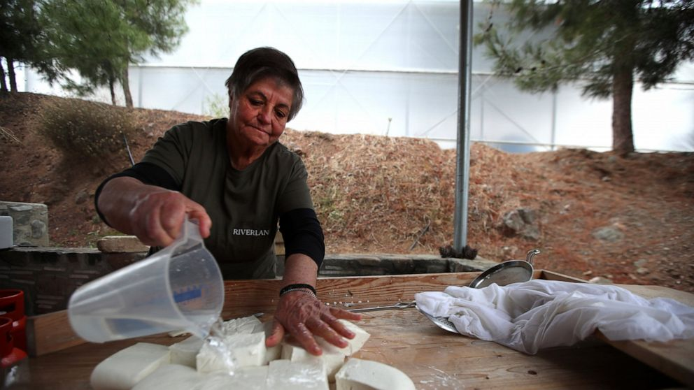 White gold: Cyprus' halloumi cheese entangled in politics