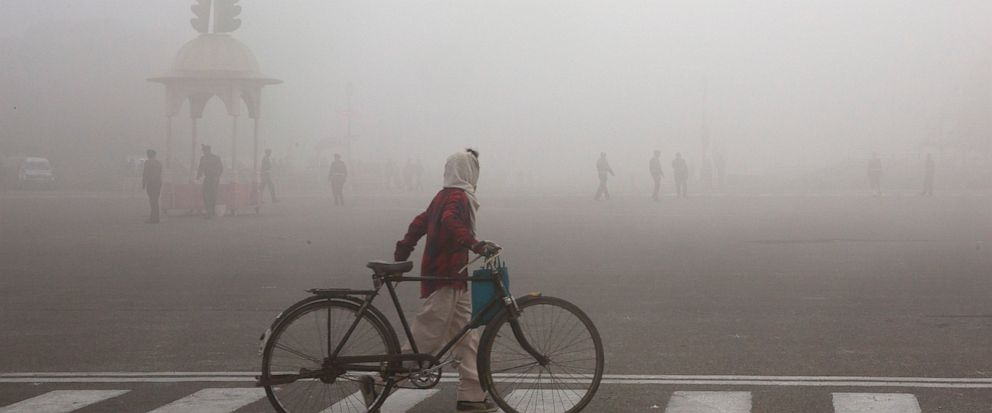 """FILE - This Jan. 18, 2019 file photo shows a cyclist amidst morning smog in New Delhi, India. Beth Gardiner's new book """"Choked"""" documents how air pollution is responsible for seven million premature deaths around the world. (AP Photo/Manish Swarup, File)"""