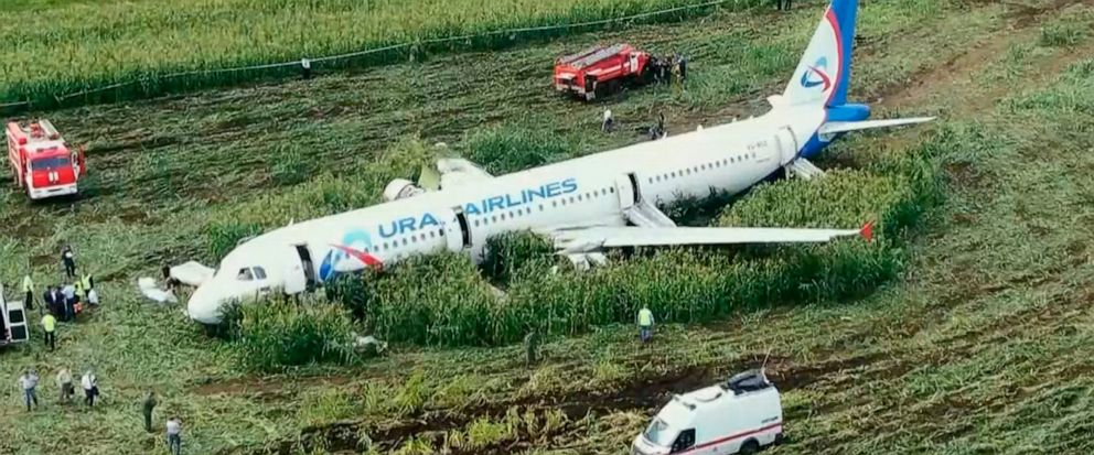 In this video grab provided by the RU-RTR Russian television, a Russian Ural Airlines A321 plane is seen after an emergency landing in a cornfield near Ramenskoye, outside Moscow, Russia, Thursday, Aug. 15, 2019. The Russian pilot was being hailed a