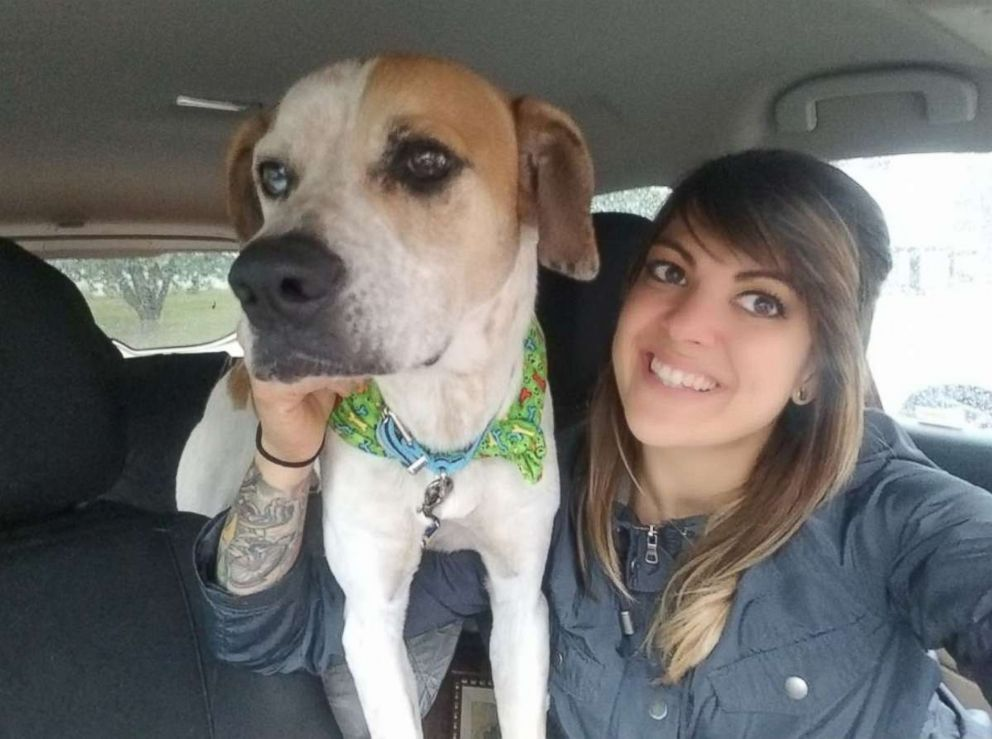 PHOTO: Henry, a 3-year-old coonhound mix, with Animal Ark Rescues canine behavior and enrichment coordinator Miranda Morrison.