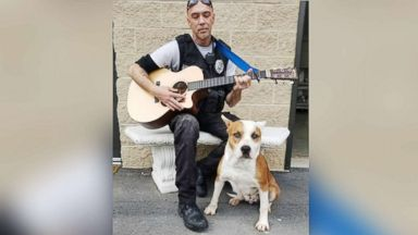 'PHOTO: Chad Olds performed with his guitar and sang to the kennel of adoptable dogs1_b@b_1Friends of Vance County Animal Shelter in North Carolina on Feb. 13, 2018.' from the web at 'https://s.abcnews.com/images/Lifestyle/animal-shelter-ht-jpo-1870216_16x9t_384.jpg'
