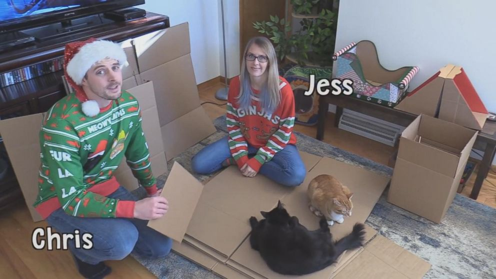 PHOTO: Chris Poole and Jessica Josephs built a giant cat-friendly gingerbread house for their cats Marmalade and Cole.