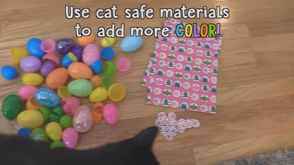 PHOTO: The YouTube duo suggest using only cat safe materials