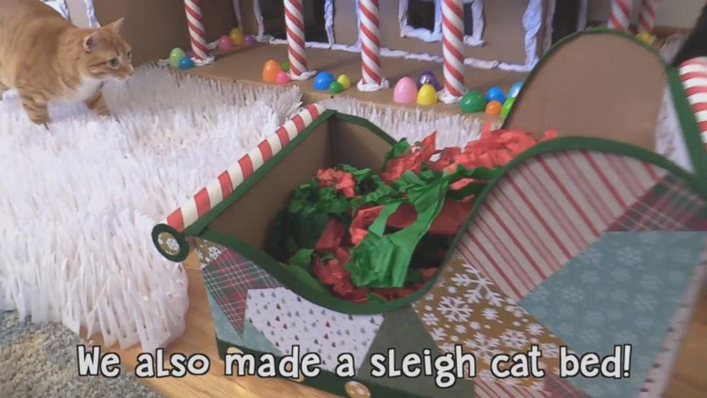 PHOTO: Chris and Jessica made a sleigh cat bed too.