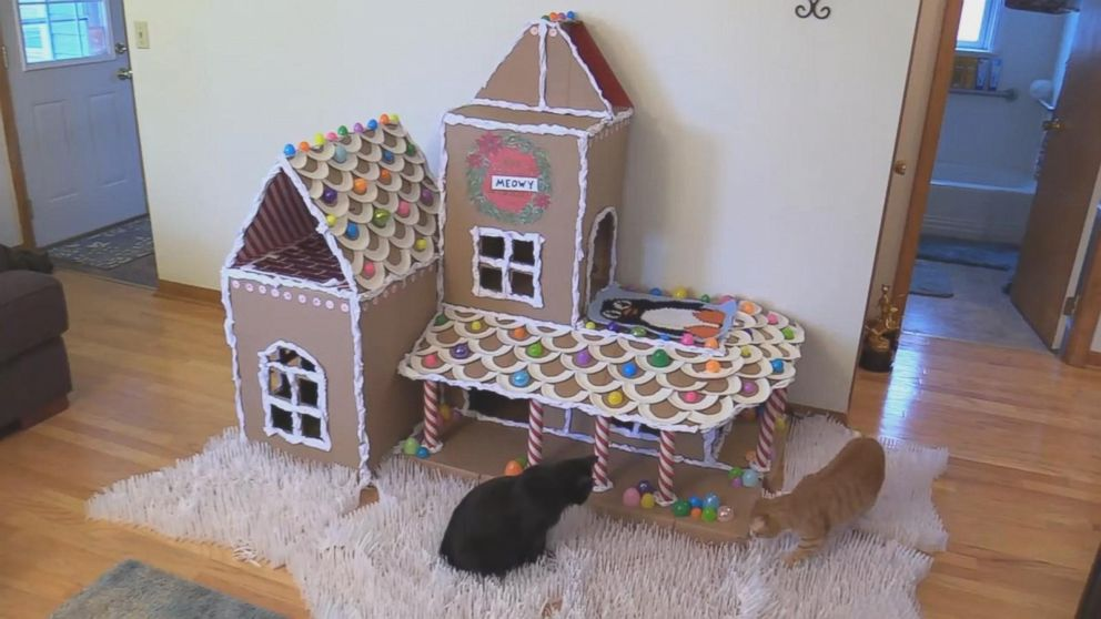 Cat Loving Couple Creates Giant Diy Gingerbread House For