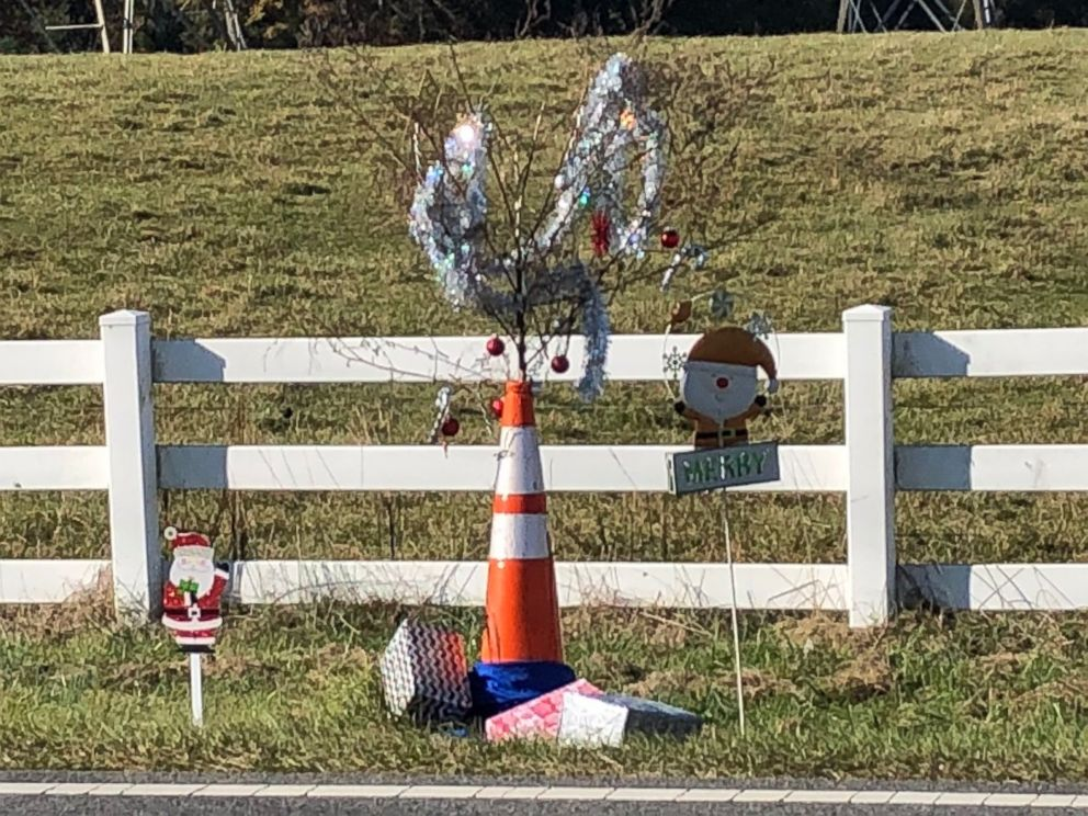 Christmas Weed.Christmas Decorated Cone Weed In North Carolina Town Raises