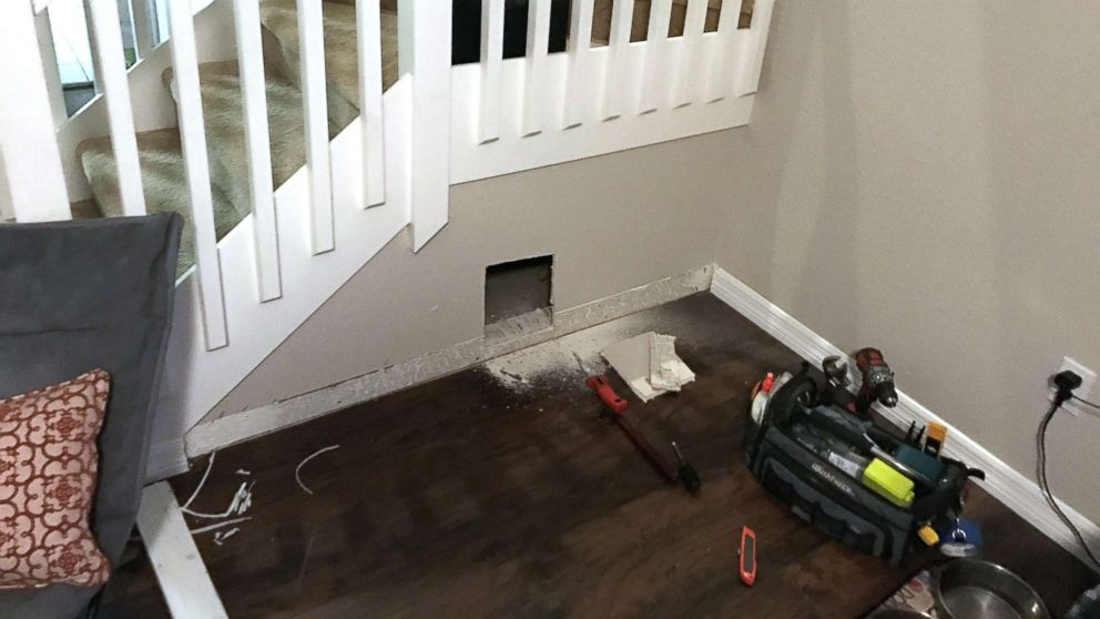 David Maceo of Tampa, Fla., built a tiny bedroom for his dog under the stairs.