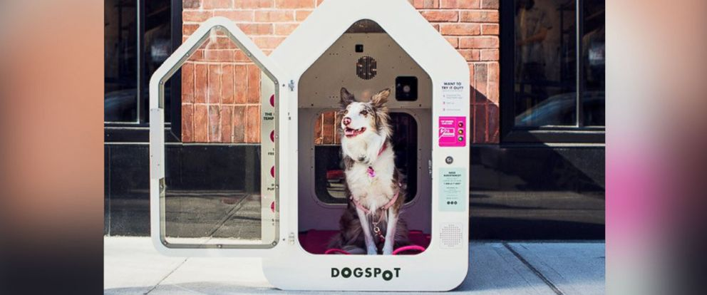 PHOTO: DogSpot is expanding to dozens of cities across the U.S.