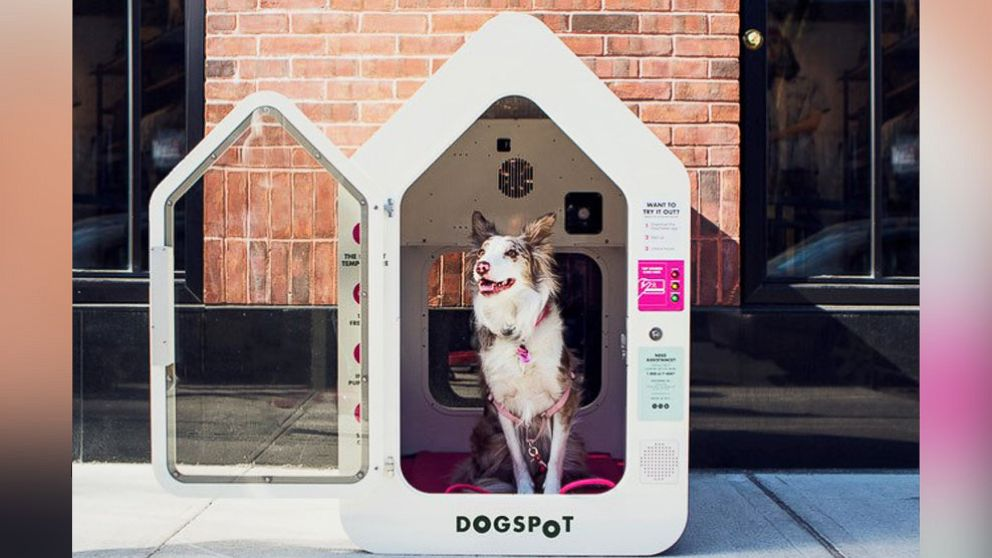 DogSpot is expanding to dozens of cities across the U.S.