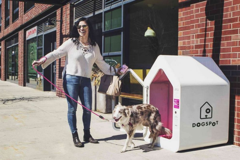 DogSpot offers an air-conditioned space for dogs to wait while their owners are indoors.