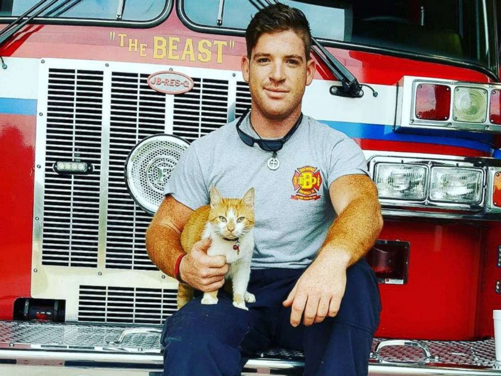 PHOTO: The firefighters at Belmont Fire Department in Greenville, S.C., said Flame the cat is therapeutic for them.