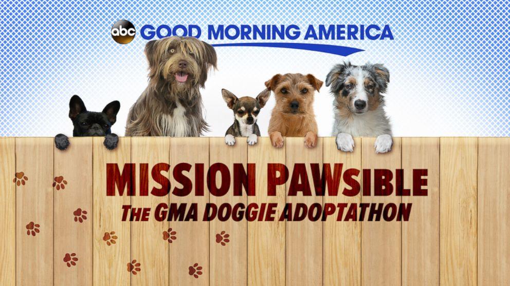 GMA' Doggie Adoptathon: List of Participating Shelters