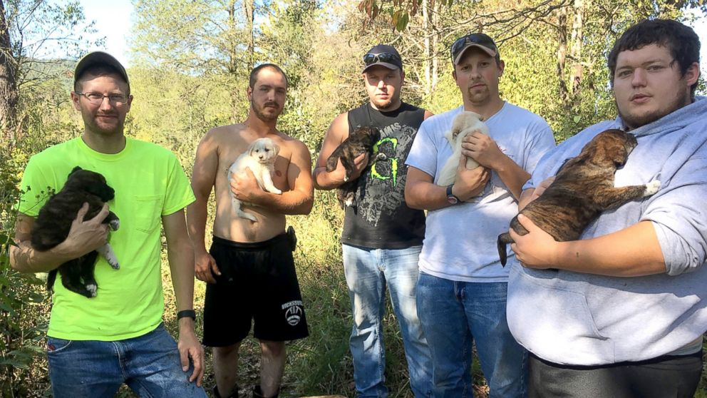 These men didn't expect expect to be caring for puppies when they left for the woods in Tennessee for a bachelor party.