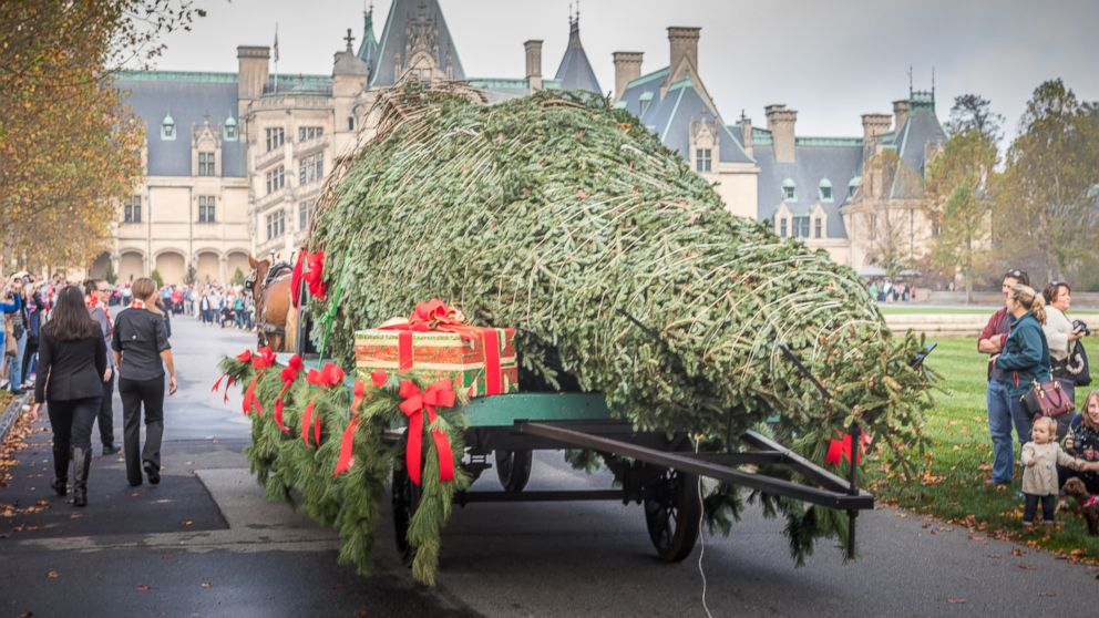 A 35-foot tall Fraser fir tree makes its way up the Biltmore Estate's long