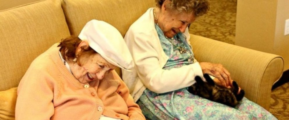 """PHOTO: Memory loss residents at Catalina Springs Memory Care Facility in Oro Valley, Arizona, are now caring for kittens in their new """"Bottle Babies"""" program."""