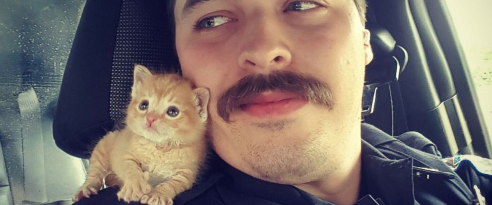 PHOTO: Mustached Cop Gives Rescued Kitten New Forever Home With His 7 Other Pets