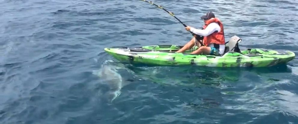 PHOTO: Ben Chancey, a charter fishing captain, tried to reel in a shark before a knock from its tails caused him to go overboard.