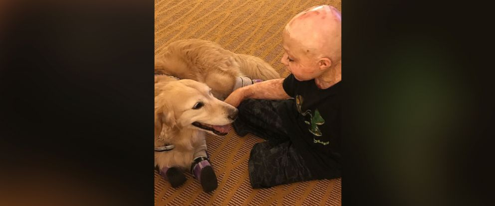 PHOTO: Owen Mahan, 10, had his dream fulfilled to meet Chi Chi, a quadruple amputee dog.