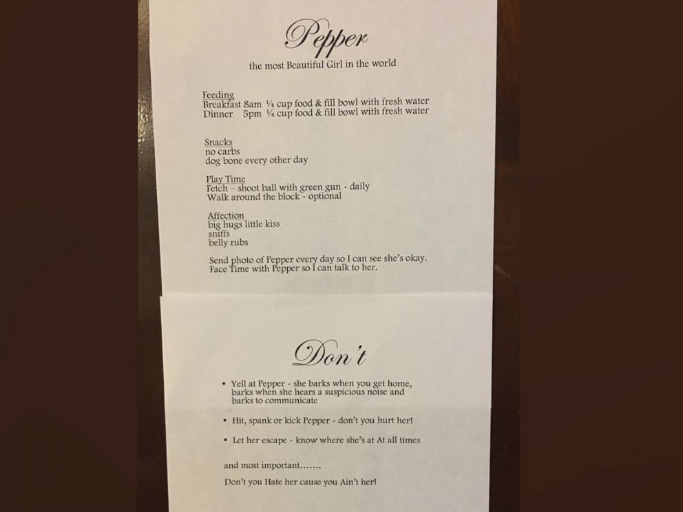 PHOTO: Tommy Rios aunt Elaine wrote him a now viral list of rules when he watched her dog Pepper for the first time July 10, 2017.