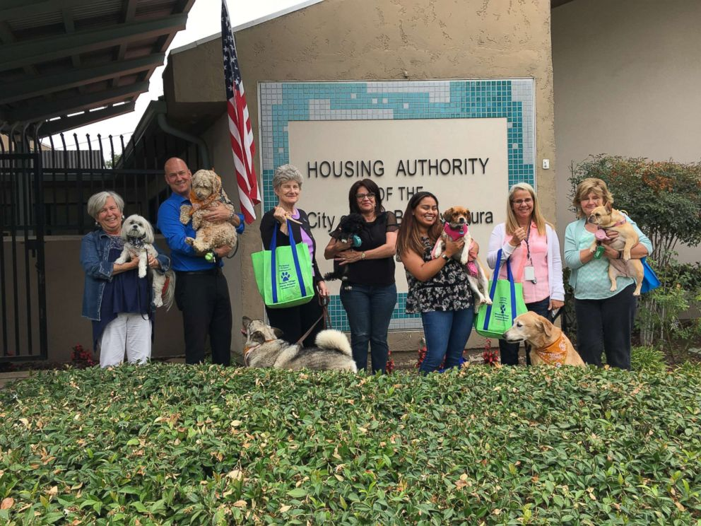 Pet Sitters International Coworkers show their dogs during Take Your Dog to Work Day