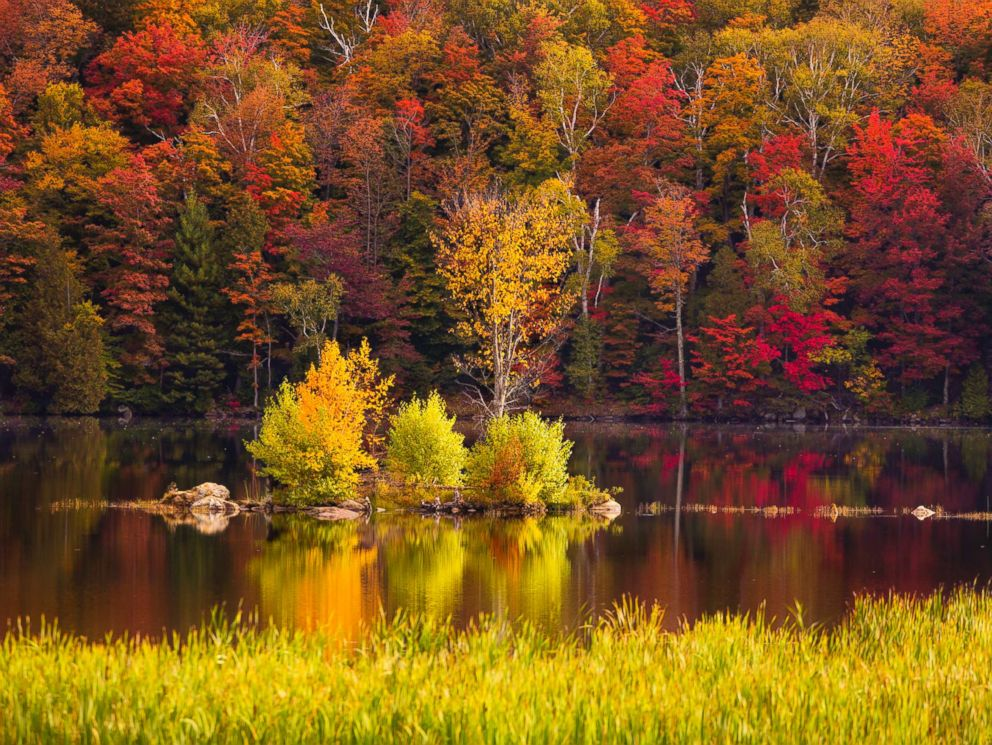 PHOTO: Foliage around Kent Pond in Killington, Vt. is pictured in this undated stock photo.