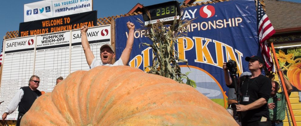 PHOTO: Joel Holland won the Safeway World Championship Pumpkin Weigh-off in Half Moon Bay, Calif. with a 2,363-pound pumpkin.