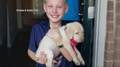 'VIDEO: Boy's reaction to receiving puppy for Christmas will melt your heart' from the web at 'https://s.abcnews.com/images/Nightline/171222_ntl_gift_0105_16x9_384.jpg'