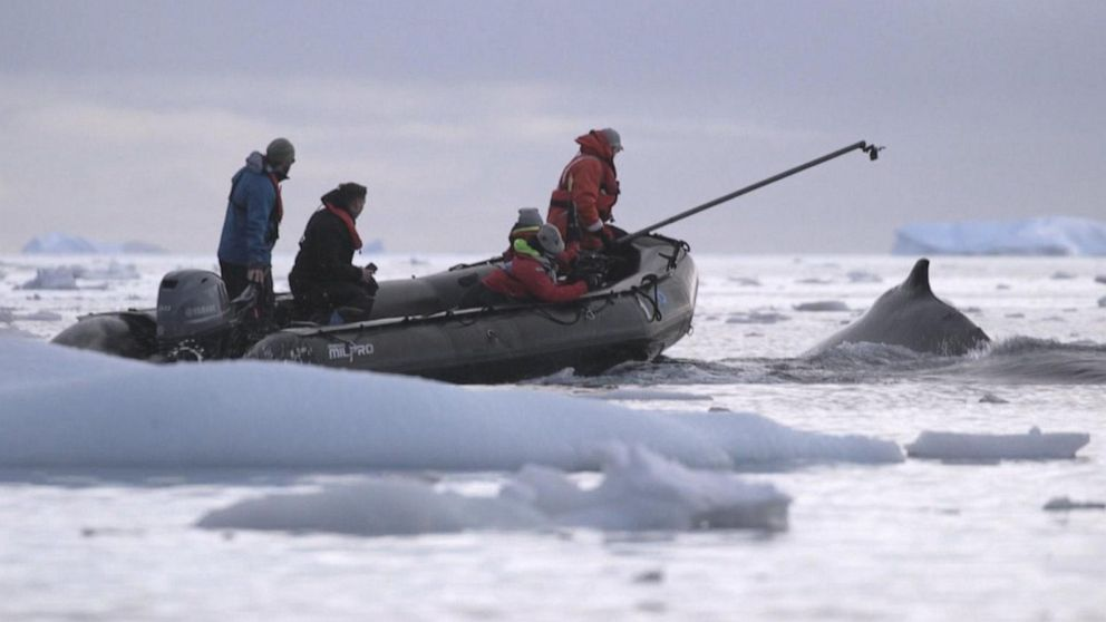 VIDEO: Researchers brave brutal conditions to research climate change in Antarctica: Part 1