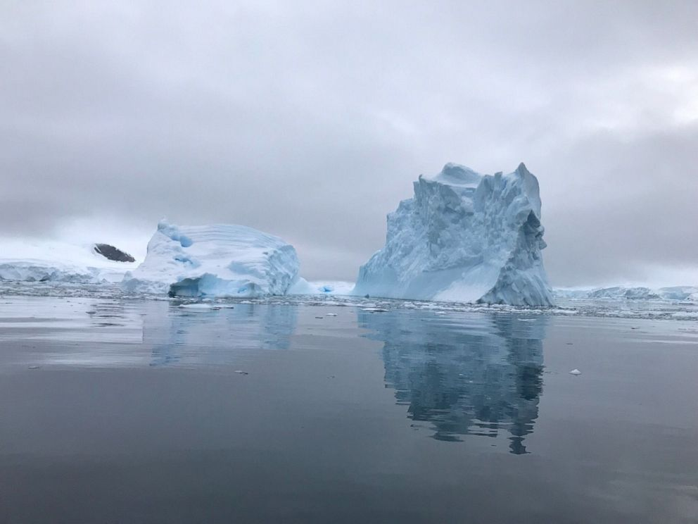 PHOTO: Icebergs are seen floating in the waters of Antarctica.