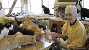 Animal Hoarders Fill Homes With Dozens of Pets