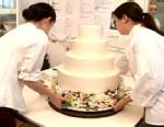 The Cake Test
