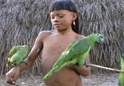 Jungle Journey Living With An Isolated Amazon Tribe