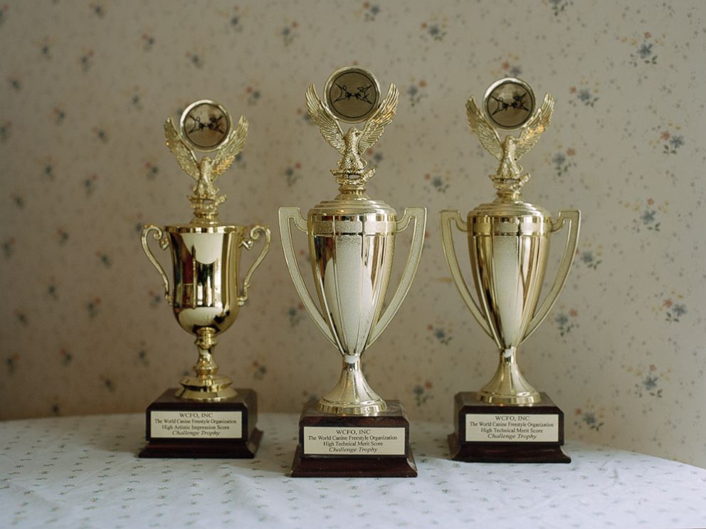 PHOTO:Trophies from The World Canine Freestyle Organization on display inside a home.