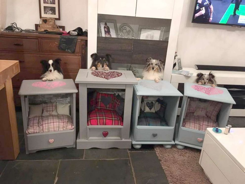 PHOTO: These arent your typical dog beds. Behold the Sheltie Shacks.