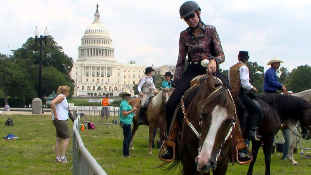 Congress allowing horse abuse? Bill to tighten rules against soring stalled