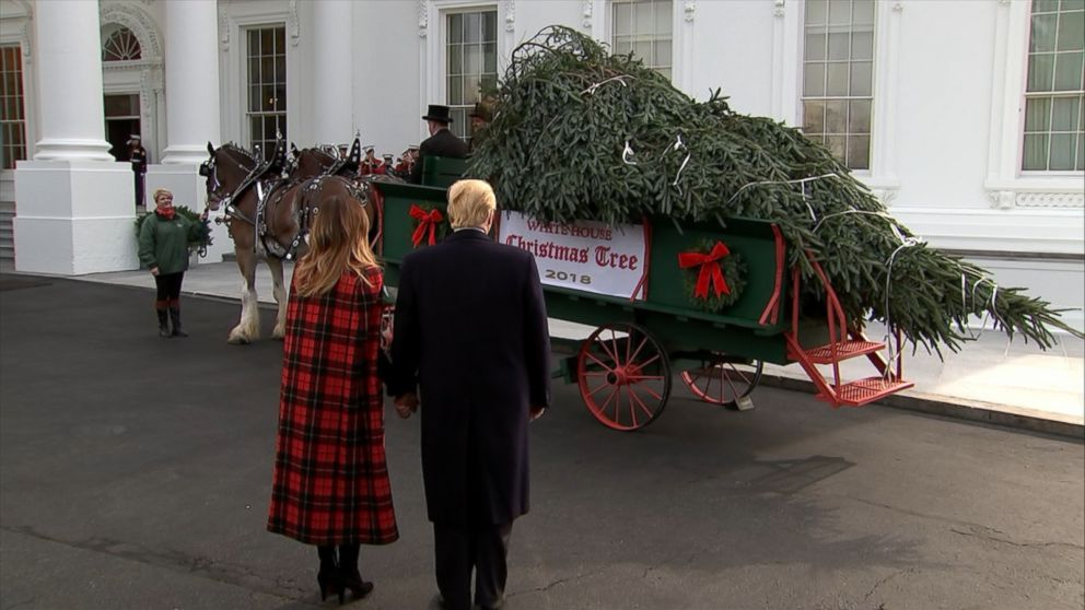 President Trump and first lady Melania Trump welcomed the nearly 20-foot Fraser Fir from North Carolina.