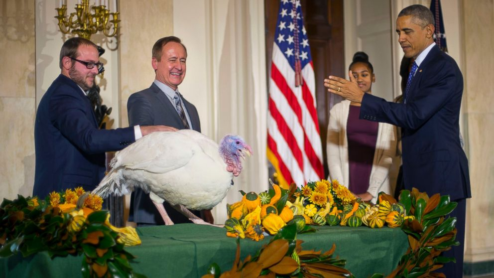 What Happens to the Turkeys Pardoned by President Obama ...