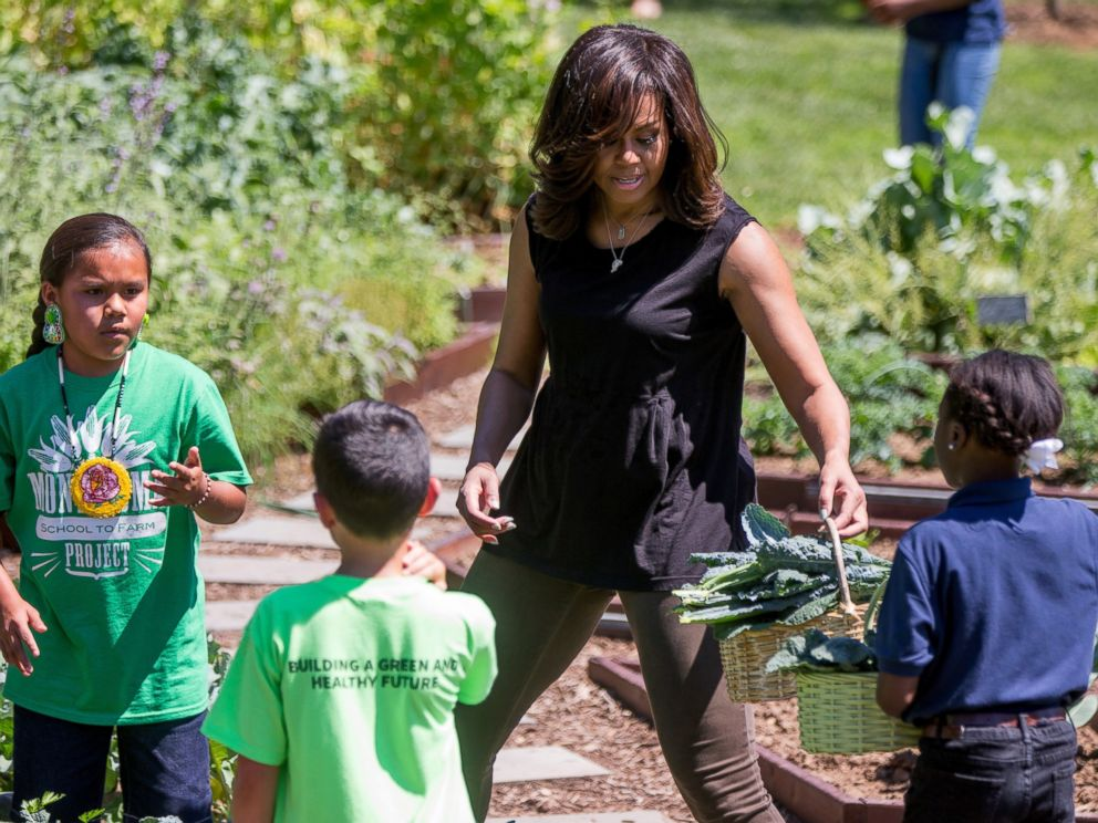 First Lady Michelle Obama Flexes Muscles While Harvesting White House Kitchen Garden Abc News