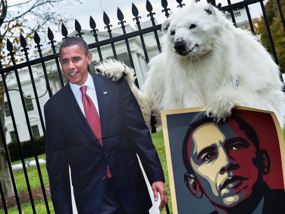 PHOTO: A protester dressed as a polar bear stands outside the White House grounds with posters on Pennsylvania Avenue Nov. 22, 2013 in Washington, DC.