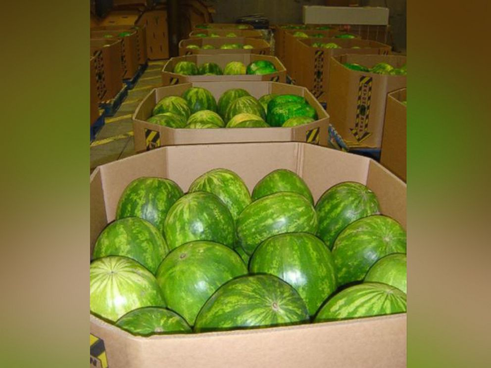 PHOTO: CBP officers in Nogales, Mexico discovered bales of marijuana co-mingled with a melon shipment.