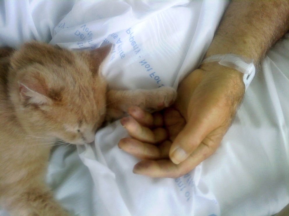 PHOTO: Tom placed his paw in the hand of Edwin Gehlert just after his passing in 2012.