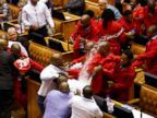 Brawl Erupts During Parliament Meeting in South Africa