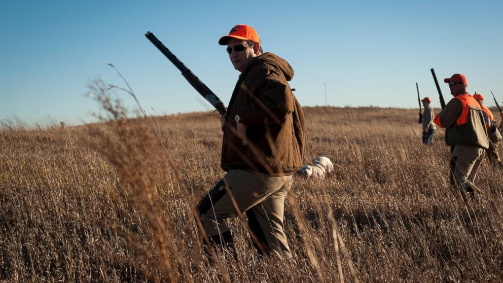Sen. Ted Cruz hikes through tall grass at a private gaming reserve during the Col. Bud Day Pheasant Hunt hosted by Rep. Steve King outside of Akron, Iowa, Oct. 31, 2015.