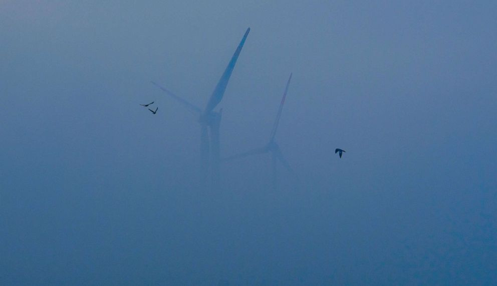Wind turbines are seen in the fog in Langen near Cuxhaven, nothern Germany, Nov. 24, 2018.
